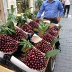 Frutas da Turquia